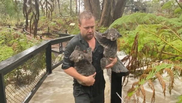 Heavy rain brings flash floods to parts of eastern Australia as bushfires rage on